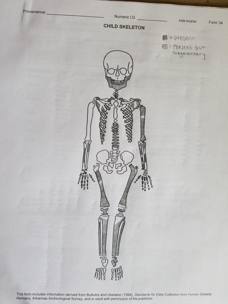 Skeletal analysis visual inventory form