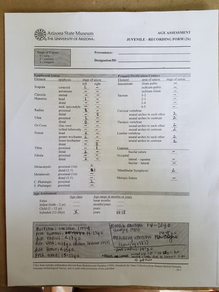 Skeletal analysis form for estimating age-at-death
