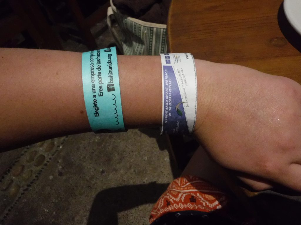 Puerto Vallarta excursion wristband
