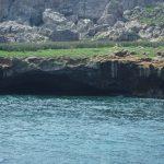 Las Islas Marietas, Puerto Vallarta excursion
