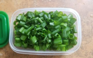 regrown green onions
